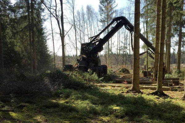 skog_maskin